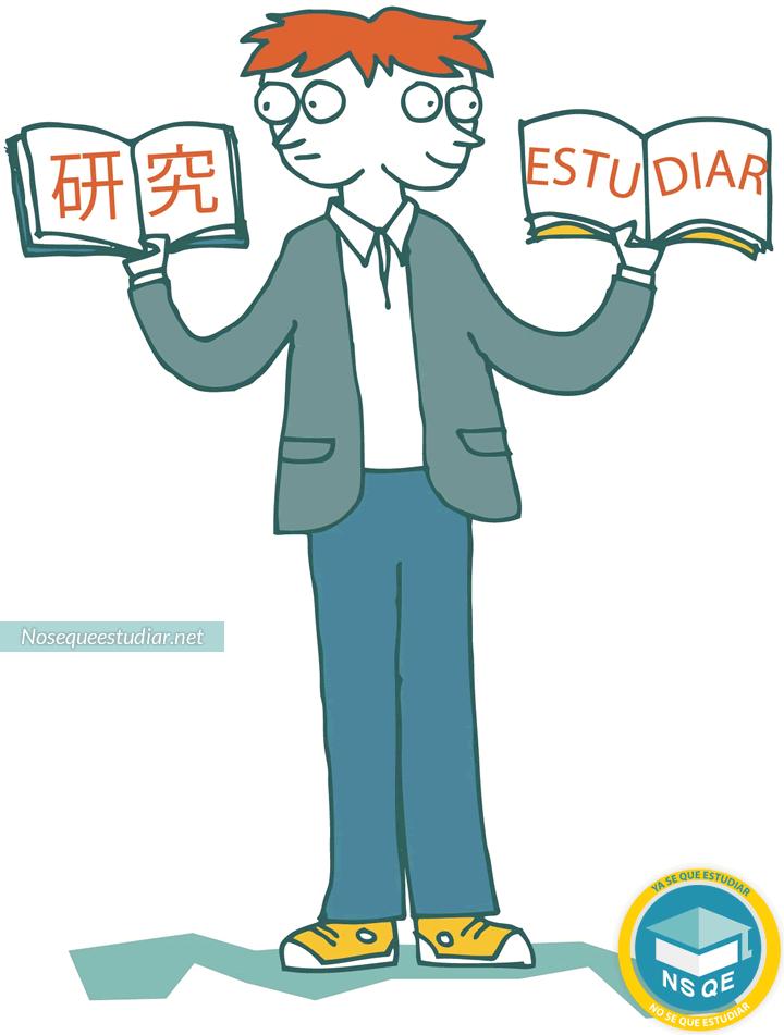 Traductor Público